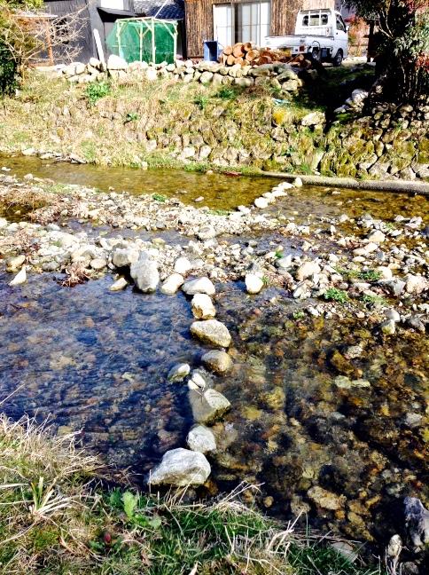 minou traverse la riviere