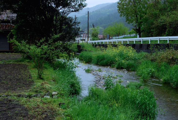 photo de la riviere