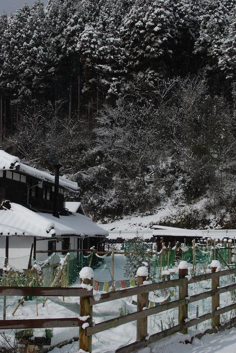 première neige DSC_2125