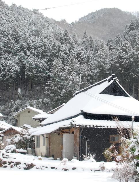 première neige DSC_2126