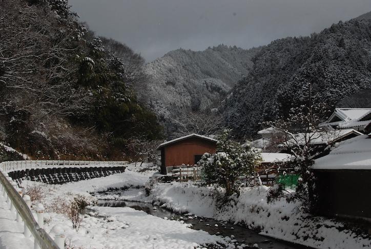 première neige DSC_2140